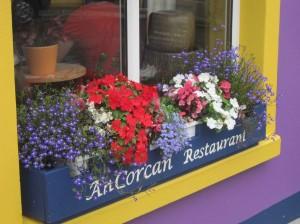 Blumen am Fenster