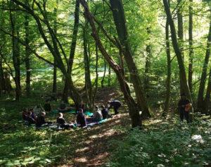 Council und Naturbegegnung (ggf. auch Online)